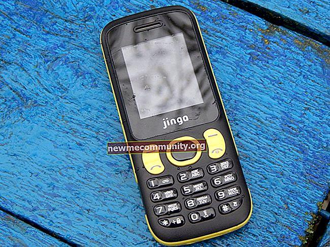 Ponsel Jinga: semua model dengan harga dan foto